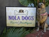 Pet-friendly doggie store NOLA DOGS Treats & Boutique in New Orleans, LA