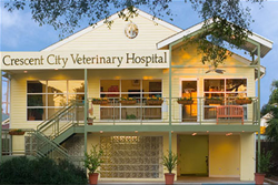 crescent city veterinary hospital