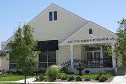 lakeview veterinary hospital pet friendly new orleans veterinarian