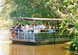 new orleans swamp boat trip